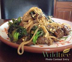 Beef and Broccoli Stir Fry  www.Facebook.com/WildtreeOfficial