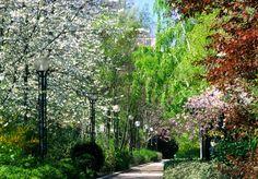 La Promenade Plantée - HarpersBAZAAR.com