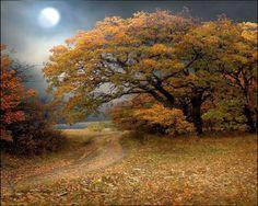 Moon Scenery Backgrounds