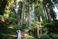 Nestldown enchanted forest wedding