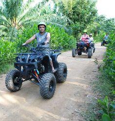 Phuket Safari Program  F3    - ATV 30 Mins.  - Elephant Trek 1 hrs.  - Elephant Show  - Monkey Show  - Fish Spa 15min