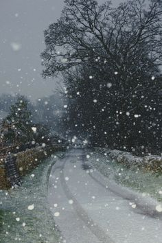"first snow of winter    ""Cotswolds"""