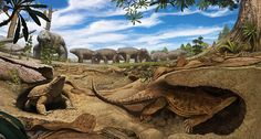 BIG DIG An ancient reptile (Eunotosaurus africanus), a precursor to today's turtles, had a body well-suited to burrowing, as illustrated here. (Another extinct reptile, Bradysaurus, is shown in the background.) ~~ Andrey Atuchin