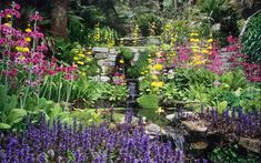 Water in English Gardens (10 of 33) | Stream-side Planting in Trebah Gardens, Cornwall, England | Flickr - Photo Sharing!