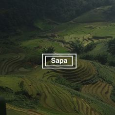 Sapa is in the north of Vietnam, not far away from the border to China. How to get from Hanoi to Sapa in Vietnam. Sa Pa, Rice Terraces, Hanoi, Far Away, Vietnam