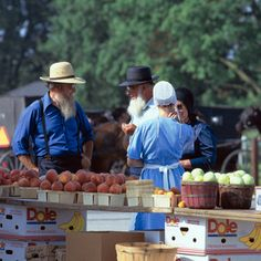 Learn about Amish and Mennonite culture and history in Elkhart County, Indiana. Find more information on driving courtesies while visiting Amish Country. Amish Family, Amish Farm, Amish Country, Country Life, Country Kitchen, Country Living, Amish Culture, Amish Community, Survival