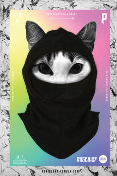 #cat #balaclava #black #gradient #pink #blue #poster #typography #vector #mischief #beauty #beast #eyes