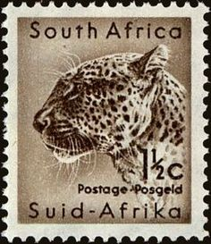 Postage Stamps South Africa 1954 Wild An. - South Africa 1954 Wild Animals SG 153 Leopard Fine Used SG 153 Scott 202 Other South African Stamps - African Animals, African Safari, Union Of South Africa, Sell Stamps, Stamp Collecting, Postage Stamps, History, World, Wild Animals