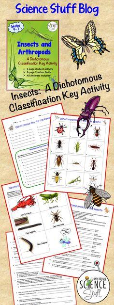 Science Stuff Blog:  Using dichotomous classification keys.
