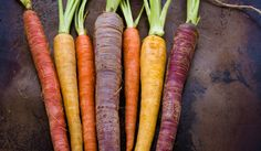 Rainbow carrots, one of many heirloom vegetables you should try! #garden