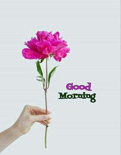 General morning