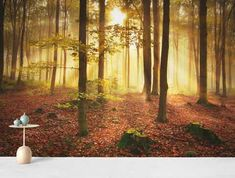 Høstskog tapet Forest Light, Misty Forest, Autumn Forest, Tree Wallpaper Mural, Forest Wallpaper, Wall Murals, Wall Lights, Painting, Free
