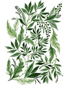 Green Leaves, an art print by Vikki Chu Art And Illustration, Illustrations, Pattern Illustration, Foto Poster, Print Poster, Arte Floral, Green Leaves, Art Inspo, Watercolor Paintings