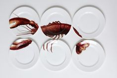 Bone China Lobster Plates