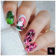 Plumes de flamant rose - Stamping Master - %%type%% %%cat%% par Love Nails Etc
