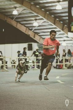 Basketball Court, Running, Sports, Hs Sports, Keep Running, Excercise, Why I Run, Lob, Sport