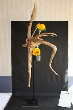 #Wurzel #hoch New Garden Club Journal.                    Sculptural floral design. #flower arrangement