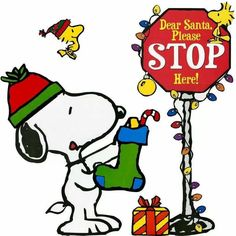 Dear Santa - Please Stop Here - Snoopy With Stocking and Woodstock and Friends Flying Around Peanuts Christmas, Christmas Cartoons, Charlie Brown Christmas, Christmas Quotes, Christmas Countdown, Christmas Pictures, Christmas Time, Xmas, Holiday Images