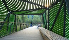 Projets: Exploring a Condensed Natural History——Hangzhou JiangYang Fan eco-park - Atelier DYJG