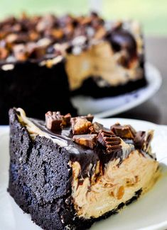 Chocolate Peanut Butter Torte- I didn& have a spingform pan, so I made two pies instead. Worked just as well! Peanut Butter Desserts, Chocolate Peanut Butter, Chocolate Ganache, Chocolate Orange, Just Desserts, Delicious Desserts, Yummy Food, Fish And Chips, Sweet Recipes