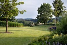 Zahrada zvlněná | Atelier Flera Boxwood Garden, Golf Courses, Atelier