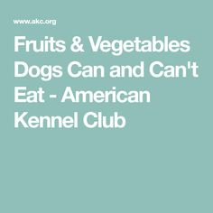 Fruits & Vegetables Dogs Can and Can't Eat - American Kennel Club