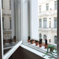 Privatzimmer in Wien, Österreich. Design and Architecture lovers will be happy! And you get a very spacious room. This flat is typical for the ringstrassen-era, with high c. Air B And B, Window View, Crochet Art, Vienna, Cactus, Succulents, Etsy Seller, Sweet Home, My Etsy Shop