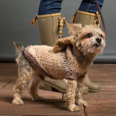 Keep you pup cozy when you make this Caron® Sprinkle Cakes™ Knit Hoodie Dog Coat in Pecan Fudge or your favorite color