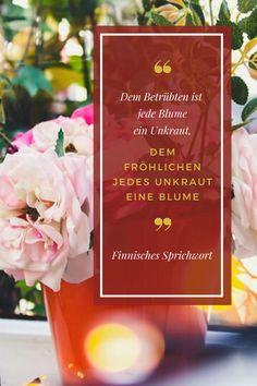 Finnisches Sprichwort: Dem Betrübten ist jede Blume ein Unkraut, dem Fröhlichen jedes Unkraut eine Blume. Wir wünschen euch einen wundervollen, positiv gestimmten Tag! #kakteenhaage #zitat #quote #blume #unkraut #gärtner #haagelife