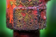 'Blunt Object' #photo #metal #decay #rust #red #green