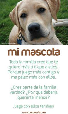TE QUIERO  15 de mayo: Día Internacional de la Familia  www.dondeesta.com