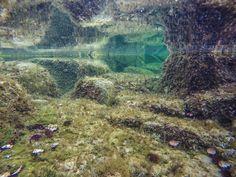 by http://ift.tt/1OJSkeg - Sardegna turismo by italylandscape.com #traveloffers #holiday | #goprohero4 #underwater #portoscuso #mare #spiaggia #sole #ricci #rocce #sardegnaofficial #lanuovasardegna #igersardegna #instasardegna #ig_sardinia #loves_sardegna #sardegna_super_pics #lauralaccabadora #sardegnageographic #unionesarda #stayfocusardegna #volgosardegna #sardiniaoffseason #loves_united_sardegna #sardegna #sardinia #goproofheday #gouniverse #gophotography #goprosardegna Foto presente…