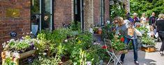 The Botanical Garden Shop – University of Copenhagen