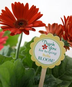 """Thank you gift for Primary teacher. Tag would read """"Thank you for helping my testimony grow"""""""