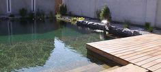 Gartengestaltung Peter Reinisch | Single Post Post, Outdoor Decor, Home Decor, Pond, Swim, Room Decor, Home Interior Design, Home Decoration, Interior Decorating