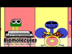 The Biomolecule Band - structure and function of biomolecules by the Amoeba Sisters. Science Lessons, Science Education, Science Activities, Life Science, Biology Classroom, Teaching Biology, Learn Biology, Biology Teacher, High School Biology