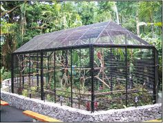 Use as structure as garden arbor- take off mesh