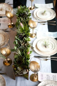 Succulent centerpieces with air plants. It needs some flowers mixed in too.