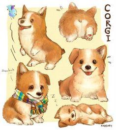 "kadeart: "" Drawing Corgi I'm Corgi mania. Someday if I have my own Corgi I will name him Martin "" Eeeee! Pembroke Welsh Corgi Puppies, Corgi Dog, Cute Drawings, Animal Drawings, Corgi Drawing, Cute Dog Drawing, Corgi Pictures, Dibujos Cute, Cute Corgi"