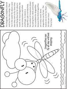 Dragonfly Fact And Coloring Page