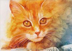gato ruivo pintura - Pesquisa Google