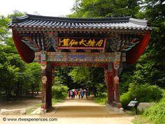 #Chuncheon #Korea #TroyTravels #TroyHendershott #RTWexperiences #BudgetTravel #Backpacking #GlobalTravel #TravelTips www.rtwexperiences.com