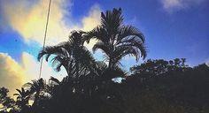 Ver esta foto do Instagram de @xyxph • 5 curtidas
