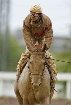 50 shades of horse racing...