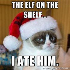 I knew I liked grumpy cat for a reason !!