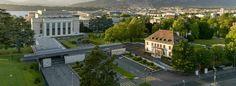 L'article Strategic Hotel 2021 – 2022 est apparu en premier sur Ecole Hôtelière de Genève. Restaurants, Tights, Restaurant