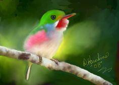 Google Image Result for http://www.fabulouspetportraits.com/Beautiful_hummingbird_X.jpg