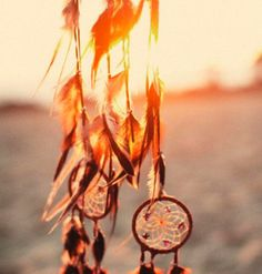 dream catchers have the power to catch all of a person's dreams; trapping the bad ones, and letting only the good dreams pass through.