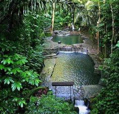 Jayuya, Puerto Rico                                                       …