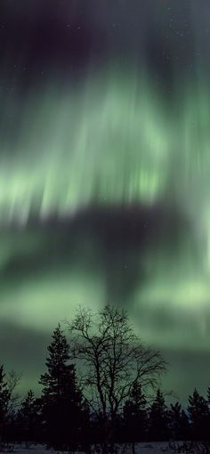 Find out how to see the Northern Lights (Aurora borealis), in Finland or other countries. Travel Images, Travel Pictures, Cool Pictures, Cool Places To Visit, Places To Travel, Finland Culture, Finland Travel, Best Travel Quotes, See The Northern Lights